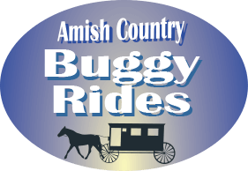 Amish Country Buggy Rides